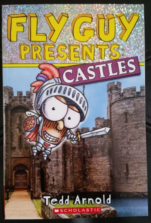 fly-guy-presents-books-castles-2