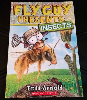 fly-guy-presents-books-insect